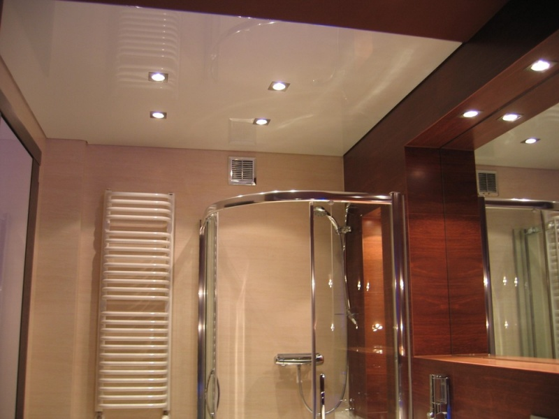 Bathroom ceilings - Bathroom ceilings ideas ...