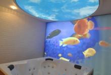 Bathroom with ceiling print