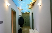 Corridor with aqua printed ceiling