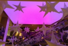 Star shaped modular ceiling panels